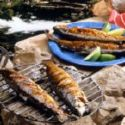 Glazed Grilled Trout